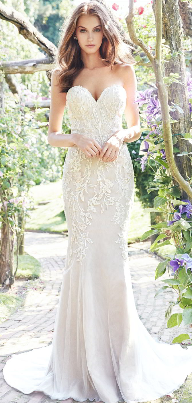 Ti Adora by Allison Webb Fall 2017 Wedding Dresses - World of Bridal